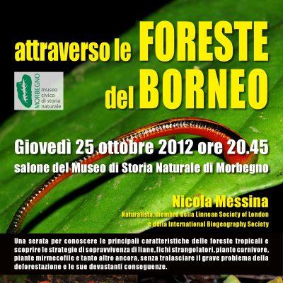 Museo di Storia Naturale, Morbegno (SO), 25 Ottobre 2012