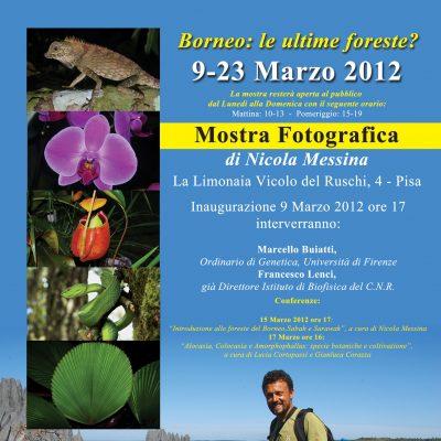 """""""La Limonaia"""", Palazzo Ruschi, Pisa, 9-23 Marzo 2012"""