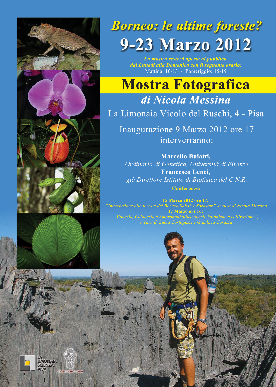 9-23 Marzo 2012, Palazzo Ruschi, Pisa
