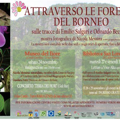Museo del Fiore, Torre Alfina (VT), 24 Novembre-23 febbraio 2012