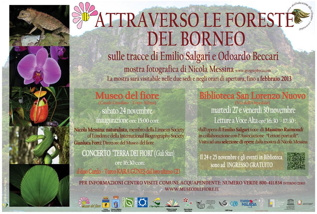 24 Novembre 2013, Museo del Fiore, Torre Alfina (VT)