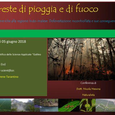 Liceo Scientifico delle Scienze Applicate, Viareggio (LU), 05 Giugno 2018