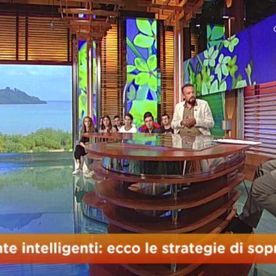 Diretta GEO, RAI 3