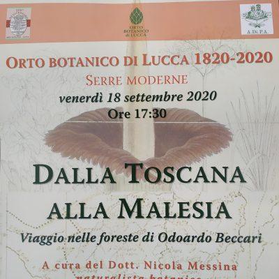LUCCA, Orto Botanico, 18 Settembre 2020, ore 17.30
