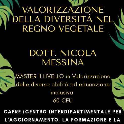 19 Febbraio 2021, Scuola di Ingegneria,Pisa