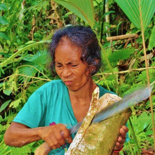 Preparazione sabebah, Halmahera